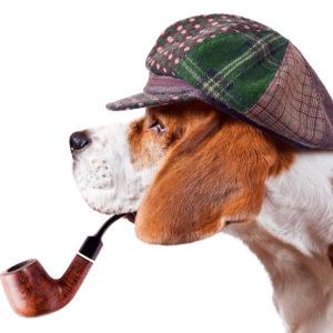 Krimiwanderung mit Hund, Soko Wuff ermittelt