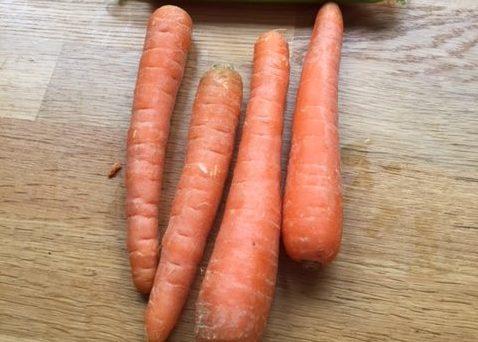 Morosche Karottensuppe, Möhren, Active Dogs