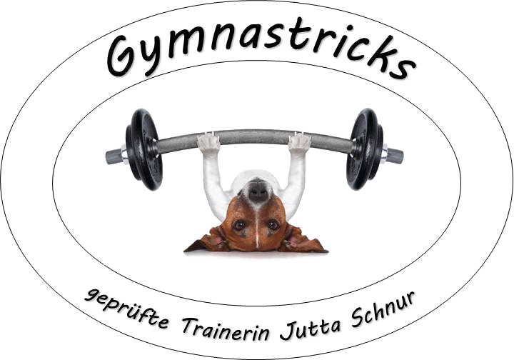 Gymnastricks - Geprüfte Trainerin